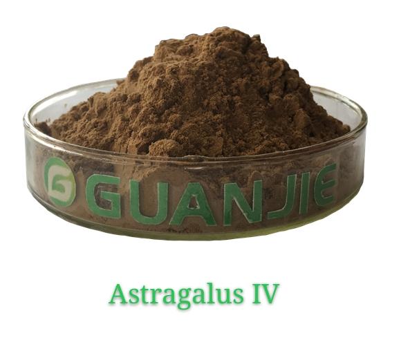 Astragalus IV